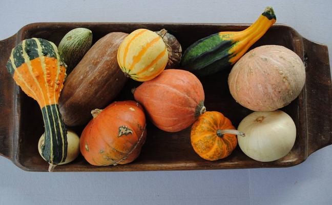 Frutas y verduras perfectas para el otoño