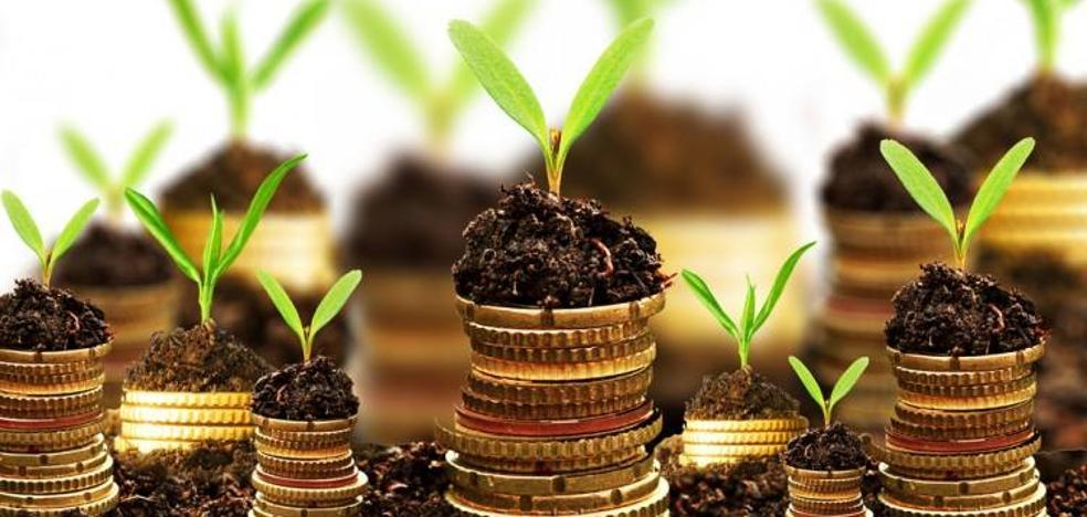 15 consejos sencillos para ahorrar dinero y cuidar el medio ambiente