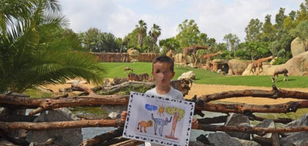 Un niño de 5 años ilustrará el Pase B! Infantil de Bioparc de Valencia