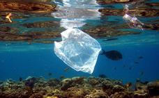 El plástico que flota en los océanos ha aumentado más de cien veces en 40 años
