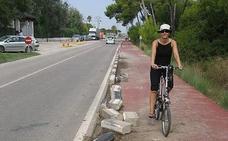 El Ayuntamiento de Valencia limpia el carril bici que conecta Pinedo y El Saler con la poda de 26 toneladas de ramas