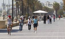 Cinco cosas que hacer en el paseo marítimo de Valencia