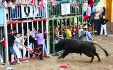Tres heridos por asta de toro en los festejos del Grao de Castellón