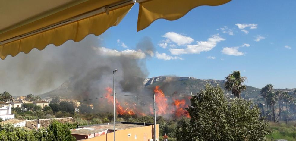 Declarado un incendio en un campo abandonado cerca de unas viviendas en Dénia