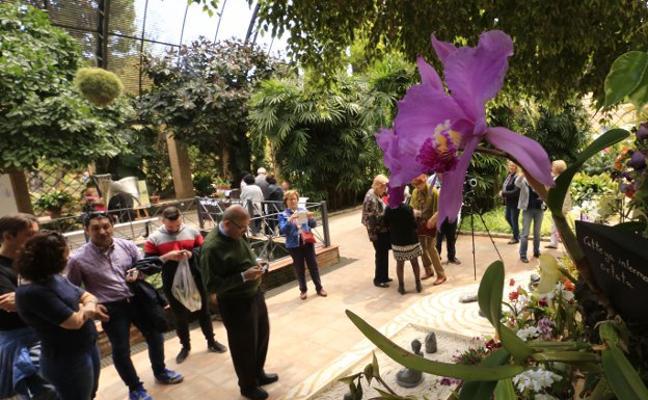 Cómo ir al Jardín Botánico de Valencia