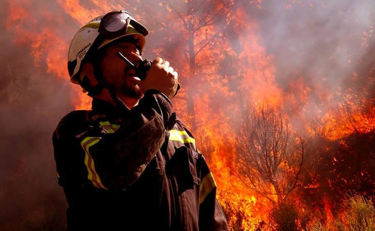 Fotos del incendio en la Sierra Calderona (II)