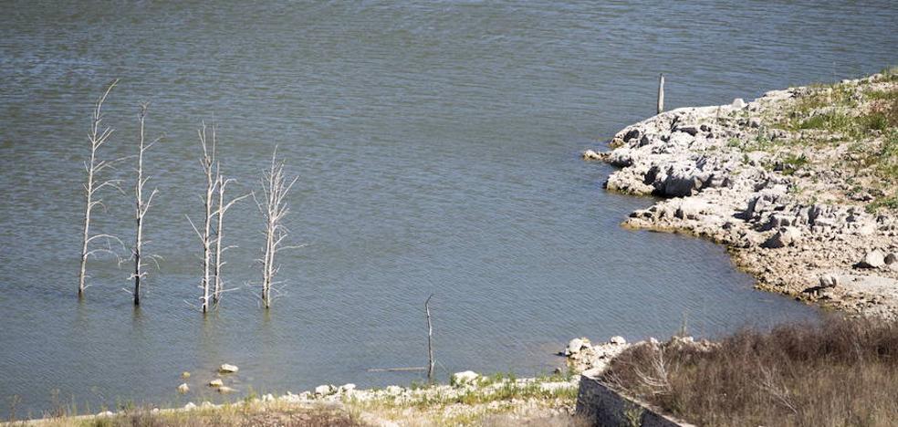 Tous y Bellús verterán al mar 25 hectómetros en plena sequía