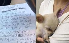 Un chihuahua de tres meses es abandonado junto a una triste carta en un aeropuerto de Los Angeles