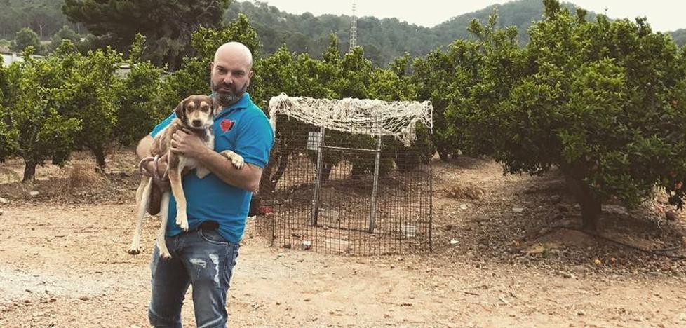 El SOS del rescatador de 100 perros
