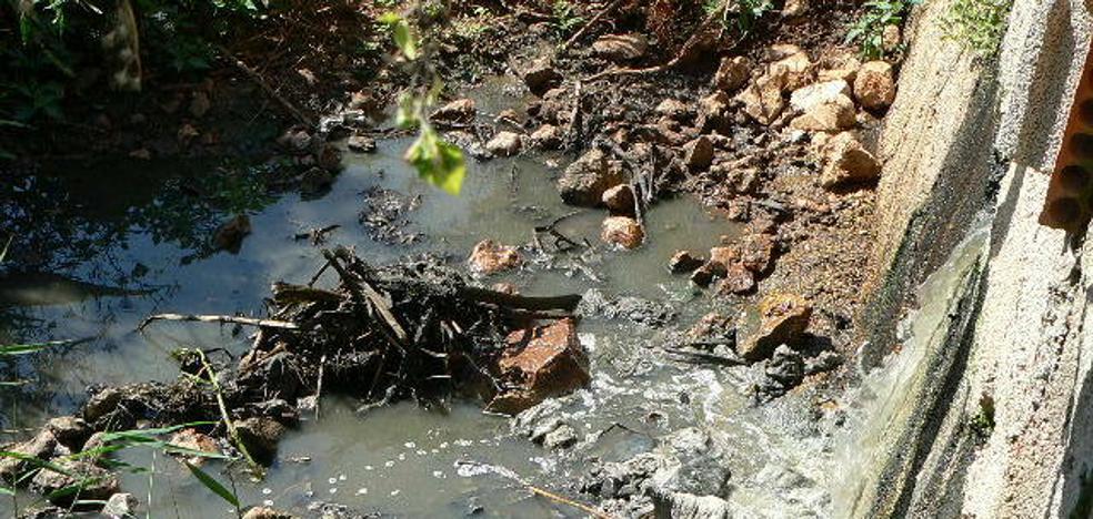 Los vecinos de Monte Pego denuncian vertidos de aguas fecales al marjal