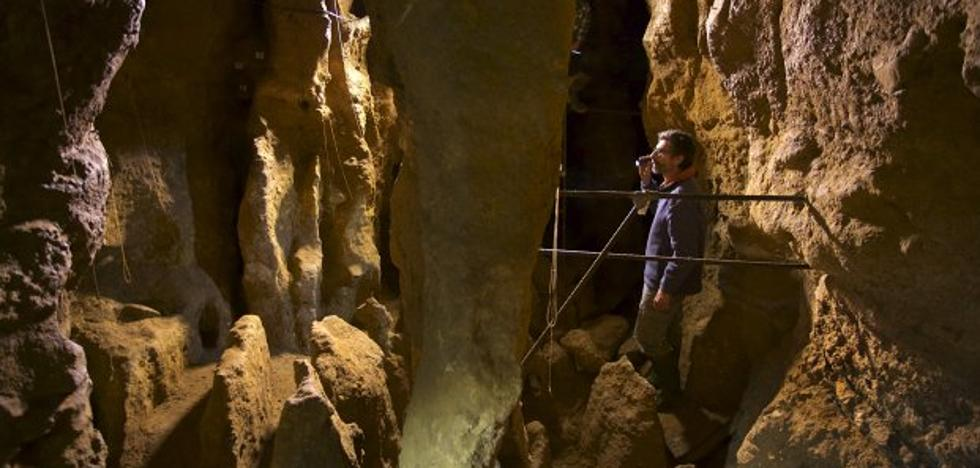 Neandertales listos