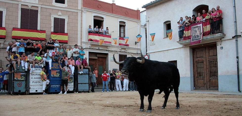 Antitaurinos denuncian el «sorteo ilegal» de un toro en Valencia