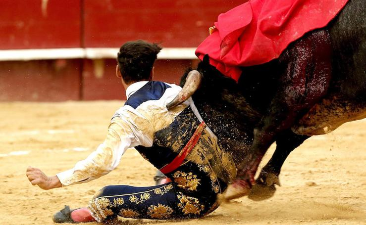 Fotos de la novillada de Los Maños en la plaza de toros de Valencia