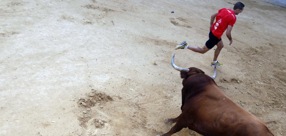 Un joven resulta herido por asta de toro en unos festejos de Onda