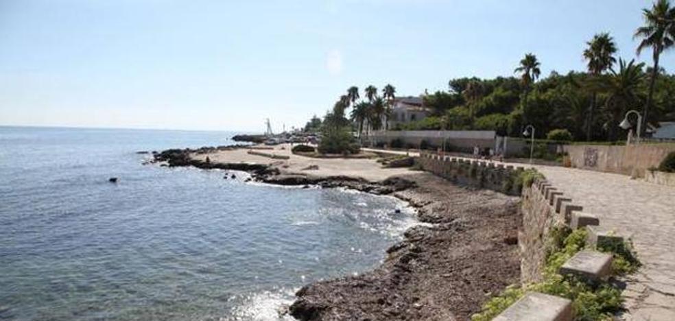 Fallece un delfín listado que apareció varado en la playa de Dénia