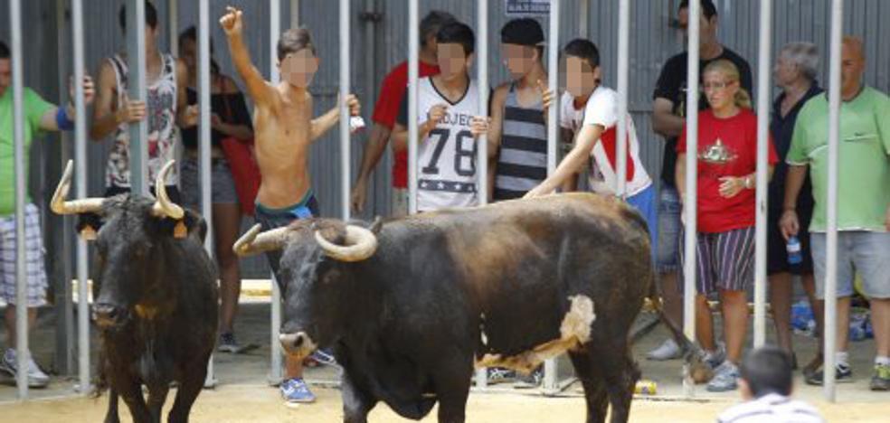 El Consell tiene pendiente hace un año el plan para evitar el acceso de menores a los bous