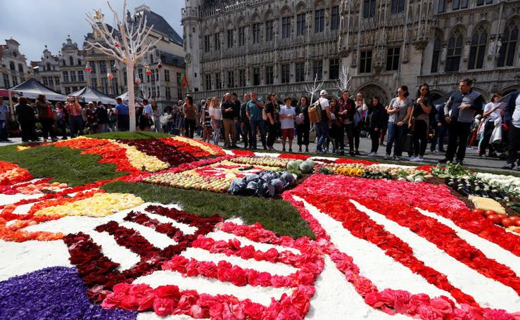 Fotos del evento floral de la 'Grand Place' de Bruselas