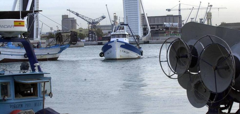 Decomisadas en Valencia 24 toneladas de sepia ilegal procedente de Tailandia