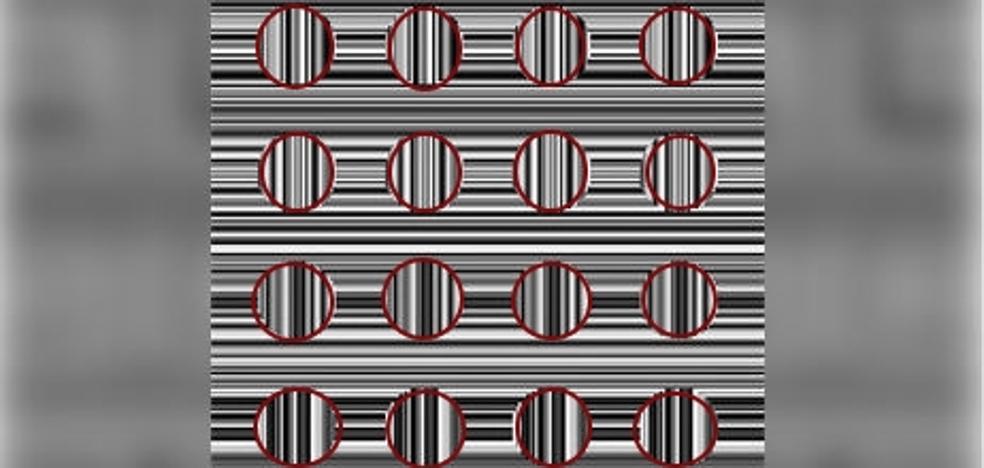 Solución | El reto casi 'imposible': ¿Cuántos círculos ves?