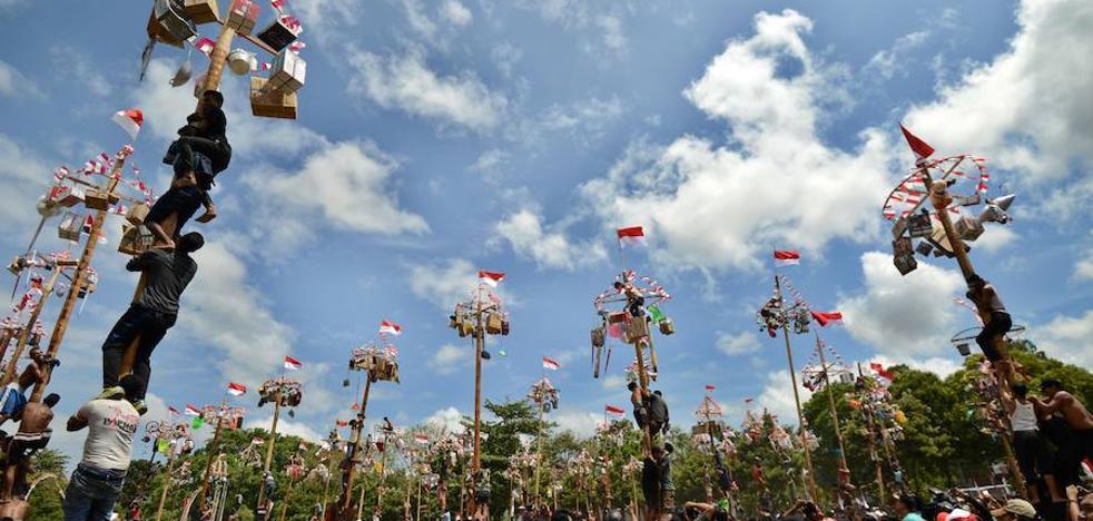 Panjat Pinang, la tradición indonesia de trepar un palo engrasado