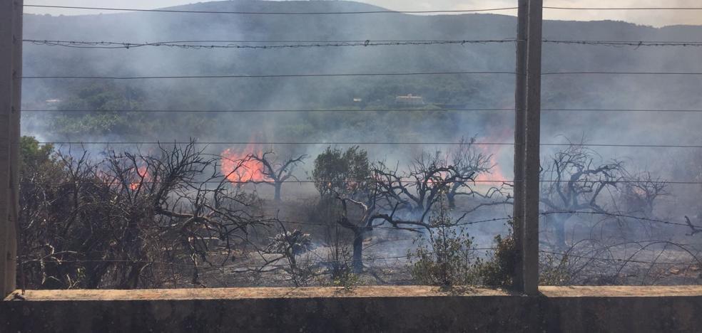 Controlado el segundo incendio forestal de l'Albufera este fin de semana