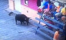 El fraude de ganaderos en los bous al carrer se dispara en los últimos tres años