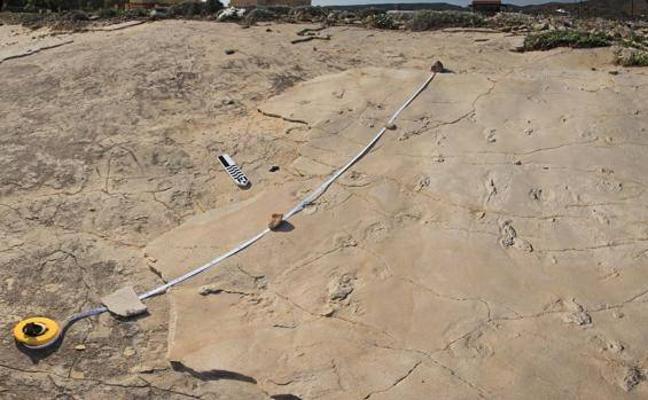 El hallazgo de huellas de 5,7 millones de años desconcierta a los científicos