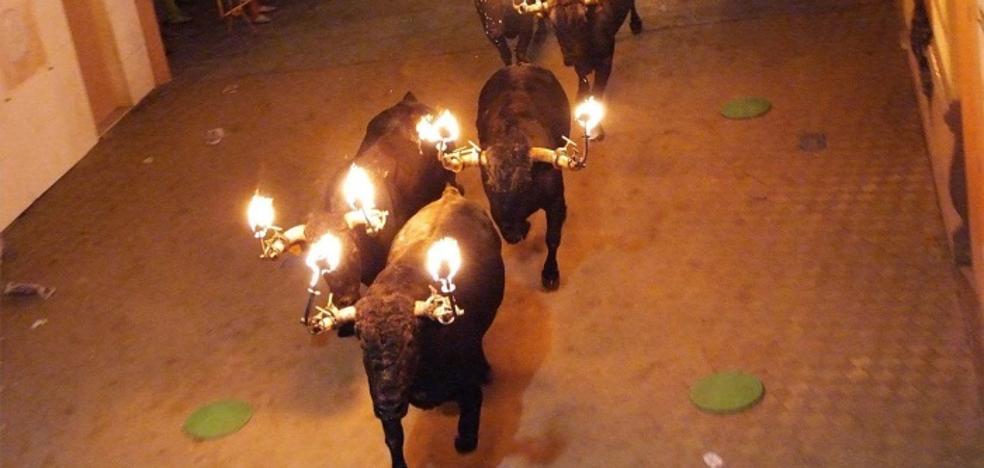 Burriana suspende el encierro de toros embolados porque la autorización del Consell no lo recoge