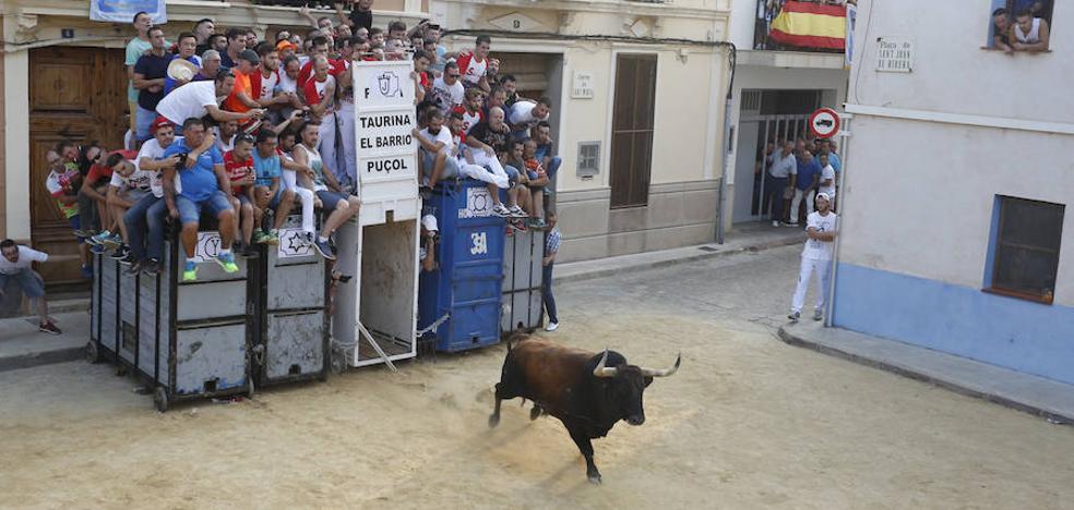 Los bous toman Puçol por el 7 de septiembre