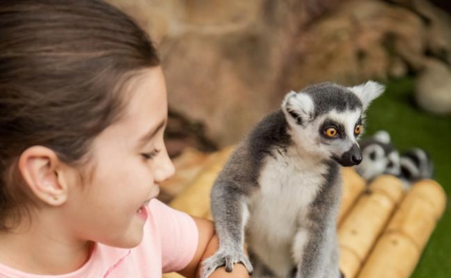 Mundomar inicia su campaña escolar con un novedoso programa educativo que permite la interacción con animales