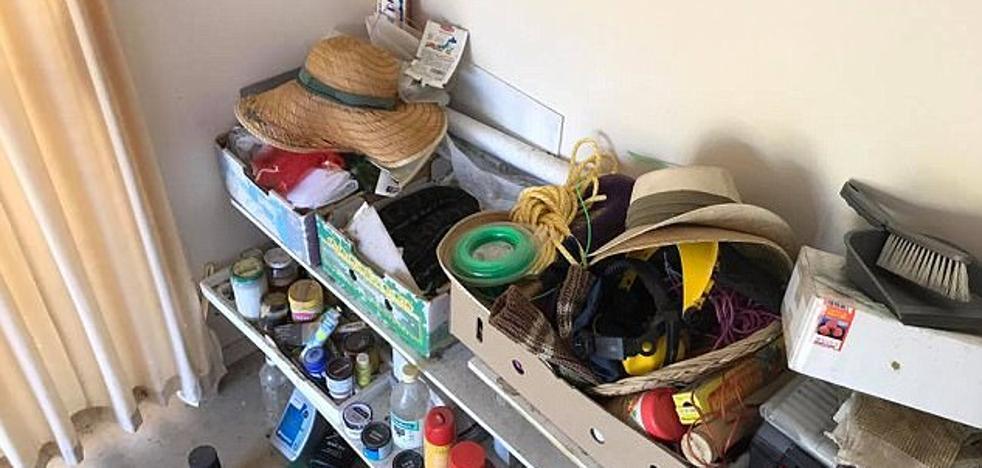 Una pitón se esconde en el garaje de una casa en Australia