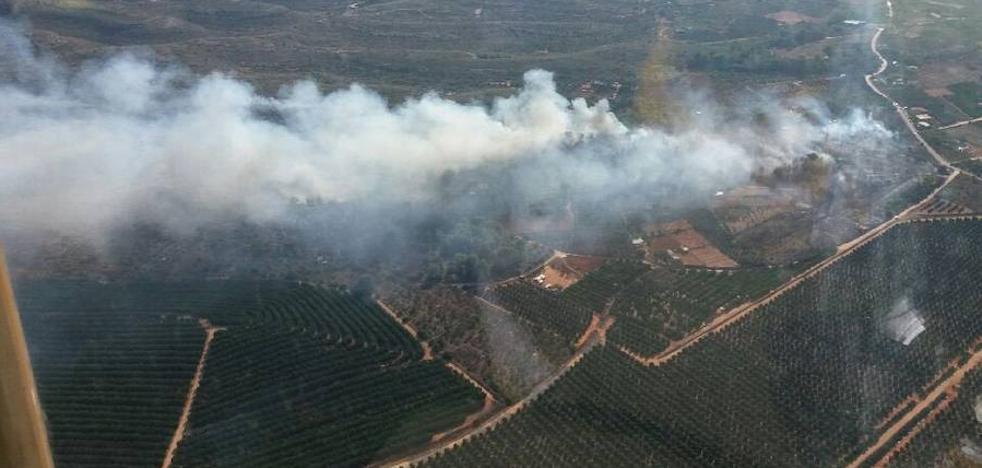 Declarado un incendio forestal en Rafelguaraf