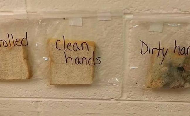 El experimento que demuestra lo importante que es lavarse las manos antes de comer