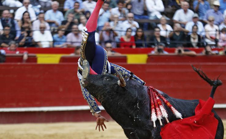 Fotos de la cogida al novillero Jesús Colombo en Valencia