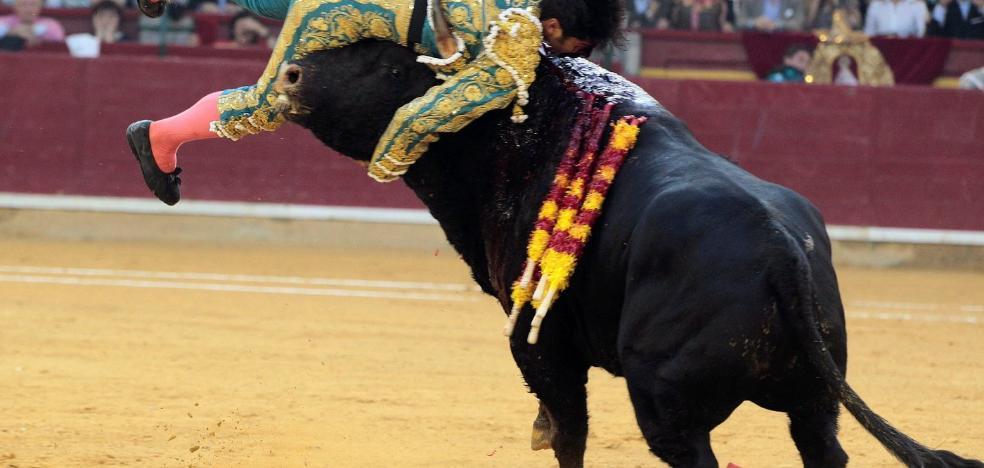 Gran triunfo y cornada de Cayetano en Zaragoza