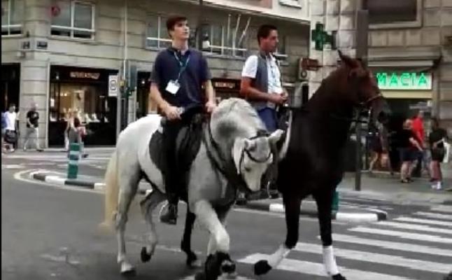 Desfile de caballos por la calle Colón de Valencia