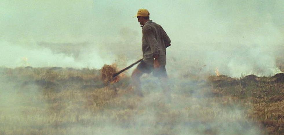La Generalitat prorroga 13 días la prohibición de quemas agrícolas a menos de 500 metros de terreno forestal