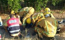Un motorista fallece en un accidente en la AP-7 a la altura de Gata