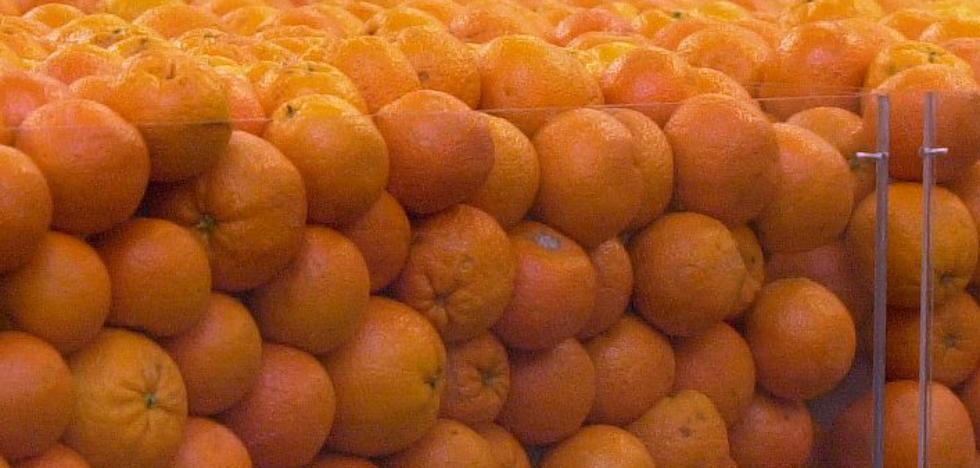 Correos reparte naranjas valencianas a domicilio