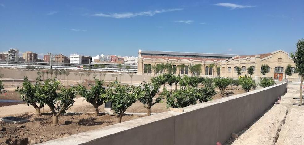 El verde asoma por el Parque Central de Valencia