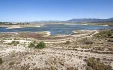 El campo valenciano pide aplicar el artículo 149 de la Constitución para paliar la sequía