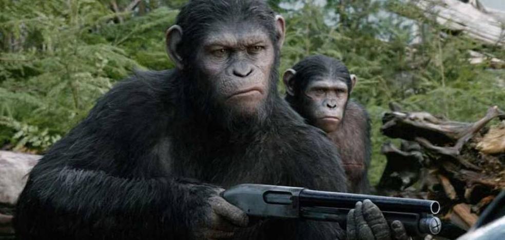 Los simios arrasan en Telecinco