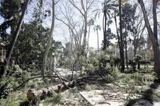 El viento obliga a cerrar cinco parques en Valencia