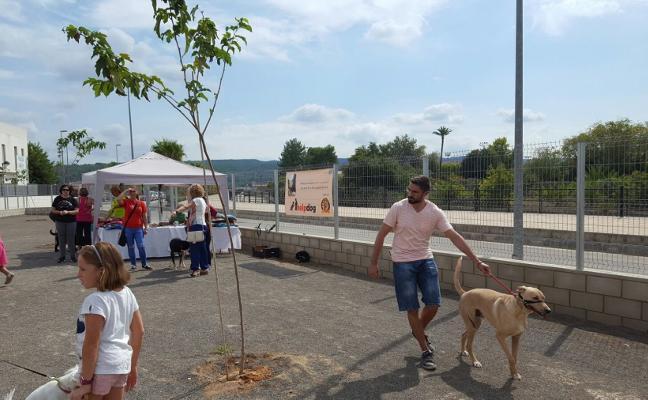 Ayudas para entidades defensoras de animales