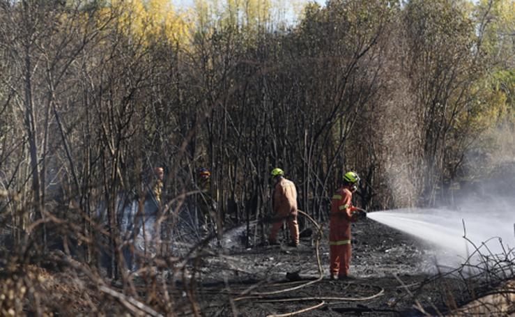Fotos del incendio en Riba-roja que ha obligado a desalojar varios chalés