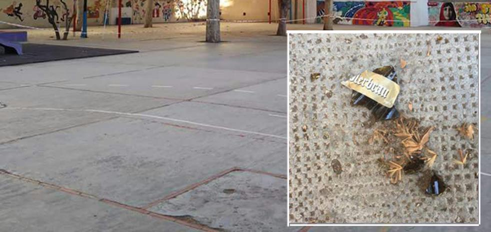 Tiran botellas y basura al colegio Luis Vives desde una finca
