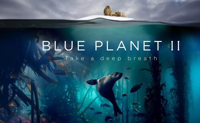 Blue Planet, el documental que enamoró a Londres