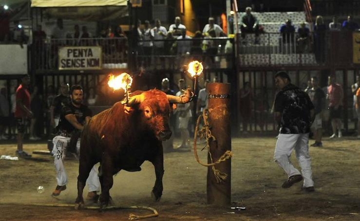Fotos del arte de embolar toros