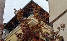 El viento azota Valencia y llegan los primeros copos de nieve al interior