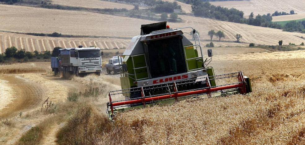 La paja de trigo, la sustituta sostenible de las baterías de litio